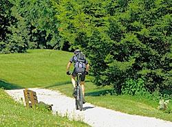 Radfahren-im-Schwarzwald