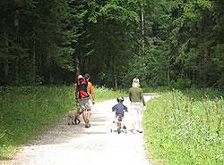 Wandern-im-Schwarzwald